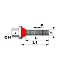 Xilema - Bullone  a variazione interasse M 12 x 1,25 L 55mm ch. 19mm
